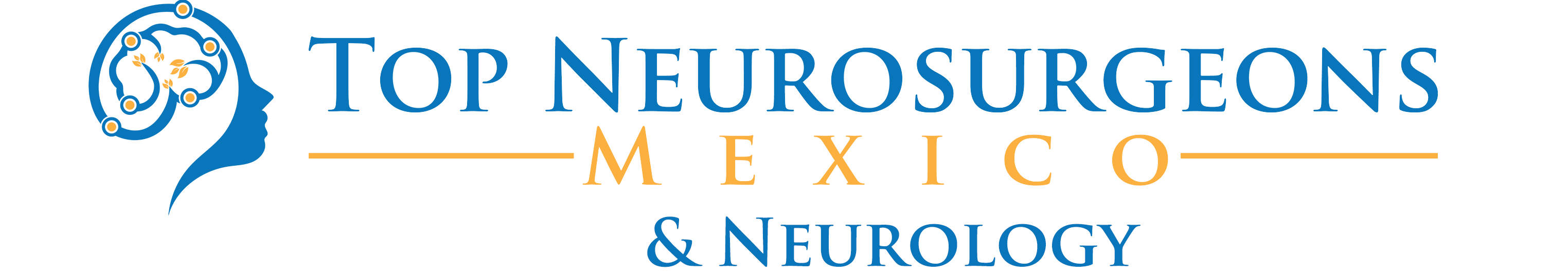 Top Neurosurgeons in Mexico